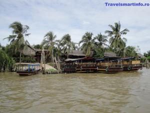 vietnam delta 6
