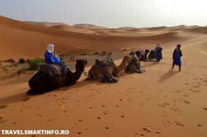maroc desert 13