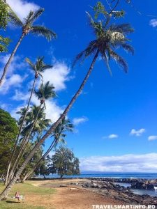 MAUI - Launiupoko beach