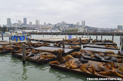 Fisherman's Wharf - Pier 39