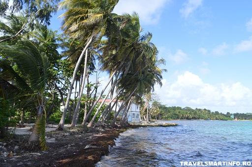 Plage de Salines - Guadeloupe