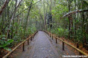 Parcul Arheologic San Agustin - alei din interior