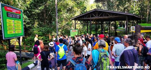 Semenggoh Wildlife Center - in asteptarea orangutanilor