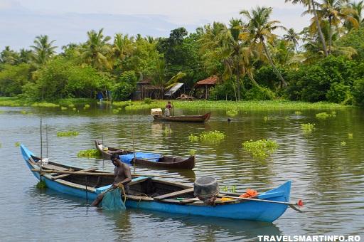 Ferme de scoici - Kerala backwaters