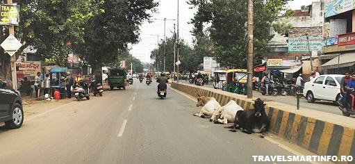 Strazile din Agra